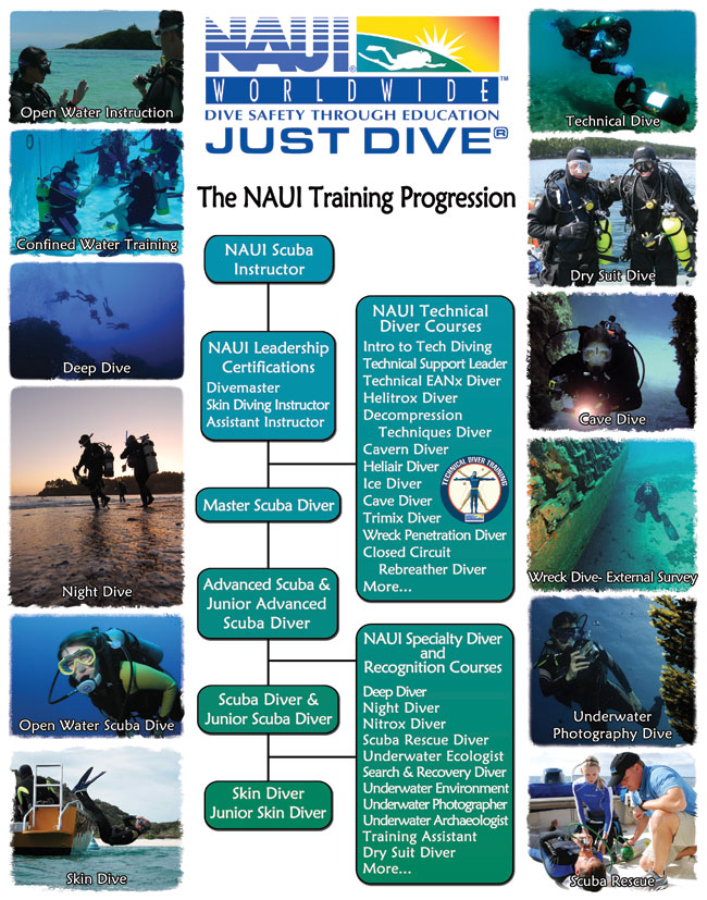 Scuba Certification San Diego Scuba Guide
