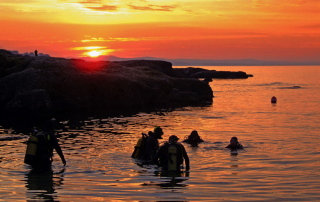 9 Tips To Improve Your Night Diving