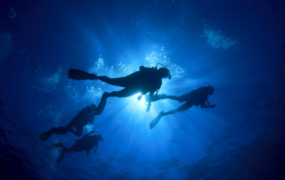 People Scuba Diving (How to Protect Marine Life While SCUBA Diving)